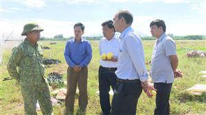 HĐND huyện kiểm tra, giám sát kết quả thực hiện các chương trình đầu tư, phát triển SXNN trên địa bàn xã Xuân Lộc
