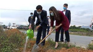 Thanh Thủy tổ chức Tết trồng cây xuân Tân Sửu 2021