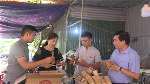 Bí thư Huyện ủy Nguyễn Minh Tường tham quan mô hình sản xuất sản phẩm từ tre