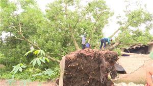 Dông lốc đã làm sập 1 nhà dân tại Tân Phương và tốc mái một lò gạch tại Đào Xá