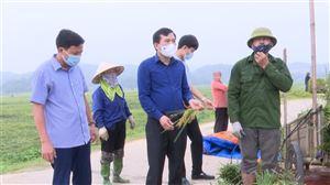 Bí thư Huyện ủy Nguyễn Minh Tường kiểm tra công tác khắc phục thiệt hại do ảnh hưởng của dông lốc và mưa đá gây ra.
