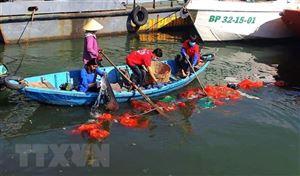 Phấn đấu đến năm 2030 giảm thiểu 75% rác thải nhựa trên biển