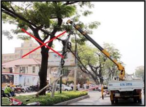 Khuyến cáo về an toàn sử dụng điện, phòng tránh  tai nạn điện trong nhân dân.
