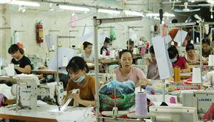 Phụ nữ xã Hoàng Xá giúp nhau phát triển kinh tế