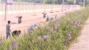 Thị trấn Thanh Thủy ra quân giải tỏa hành lanh an toàn giao thông và tổng vệ sinh môi trường