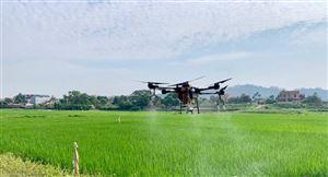 Phun thuốc trừ sâu bằng máy bay không người lái tại xã Đồng Trung