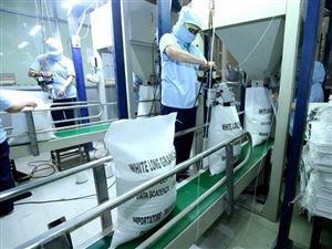 Xuất khẩu nông lâm thủy sản sẽ đạt mốc kỷ lục mới với 40 tỷ USD