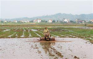 Phát huy vai trò nòng cốt trong xây dựng nông thôn mới