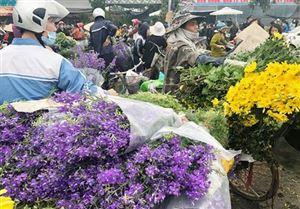 Trường hợp có đến chợ hoa Mê Linh đã có kết quả âm tính